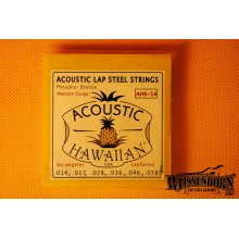 Asher Acoustic Lap Steel Strings