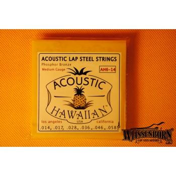 Asher Acoustic Lap Steel Strings