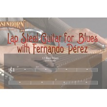 Lap Steel Guitar for Blues